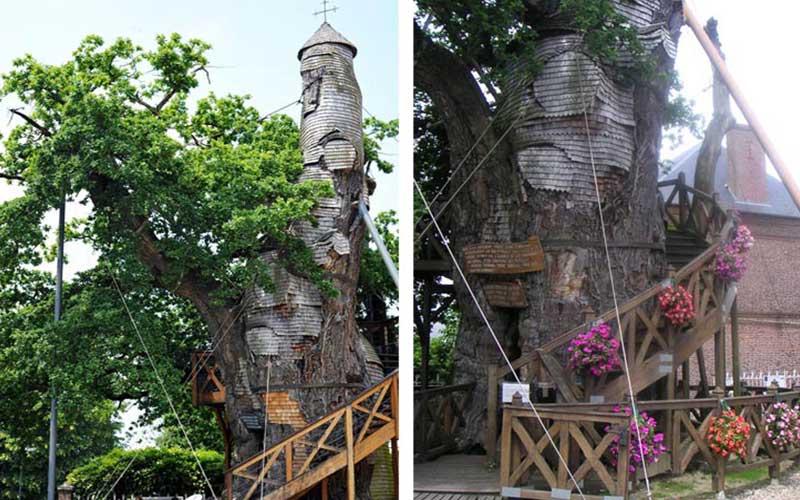 Sacred_Tree_ChapelOakofAllouville-